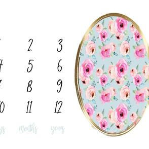"42"" Shades of Pink Roses Milestone Blanket"
