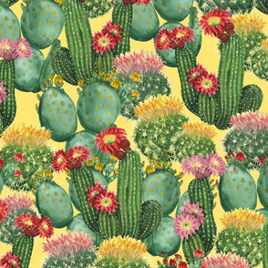 cactus on yellow (large scale)