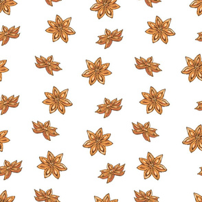 Pattern with Clove and Star Anise