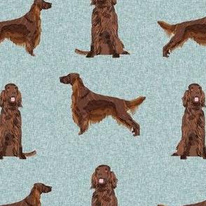 irish setter dog - dogs, dog print, pet, blue