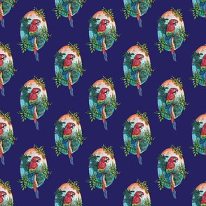 Macaw on Blue