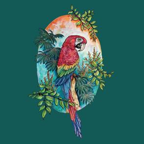 Macaw on Green Large Print