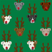 pitbull reindeer dogs - cute rudolph dogs - green