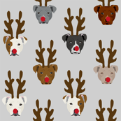 pitbull reindeer dogs - cute rudolph dogs - grey