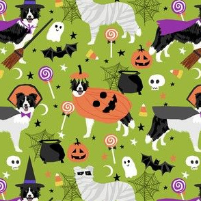border collie halloween dog fabric - cute dog, dogs, dog breed, mummy witch, pumpkins - lime