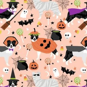 border collie halloween dog fabric - cute dog, dogs, dog breed, mummy witch, pumpkins -peach