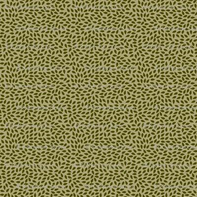 Leaf-sleepers-dark-leaf
