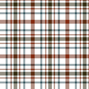 "MacDonagh tartan - 7"" weathered on white"