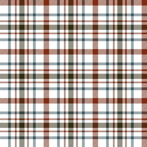 "MacDonagh tartan - 6"" weathered on white"