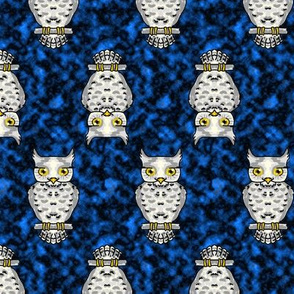 Ms Owl on Blue Up and Down