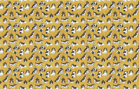 Rfriztin_beagles_y_shop_preview