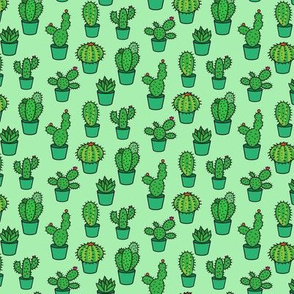 CACTUS COLLECTION ON MINT GREEN