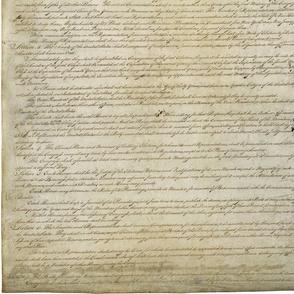 smaller dimensions constitution-62943