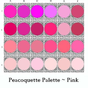 Peacoquette Palette ~ Pink Selection
