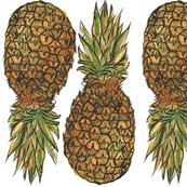 Pineapples_shop_thumb