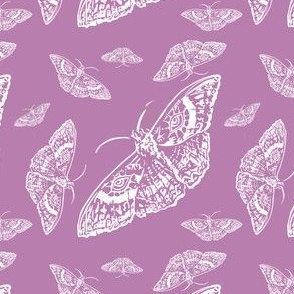 Moth Cloth (Rose and White)