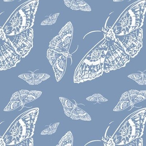 Moth Cloth (Light Blue and White)