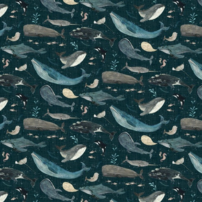 Whale's song dark blue {small}