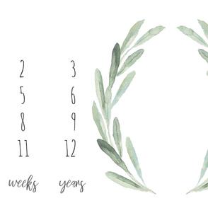 """54""""x36"""" // Boho Olive Branch Baby Milestone Blanket"""