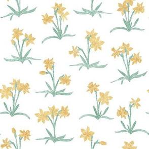 tiny spring daffodils