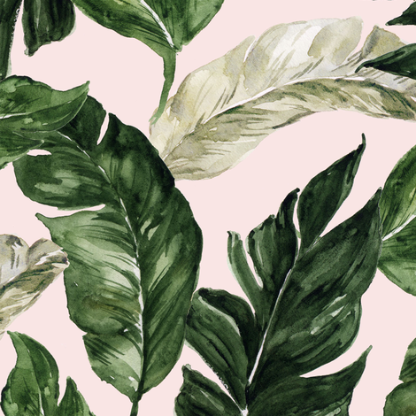 "12"" Tropical Banana Leaves Blush fabric by hipkiddesigns on Spoonflower - custom fabric"