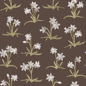 tiny white daffodils on brown