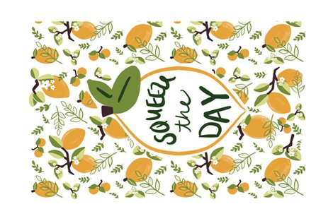 Rrrsqueeze_the_day_tea_towel_with_border_shop_preview