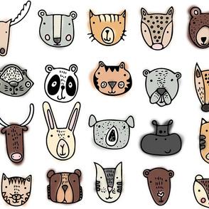 Wild Animals in Color