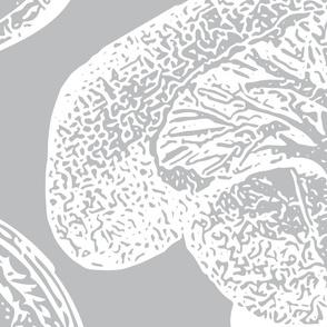 Anatomical Organ Variety White on Grey Jumbo