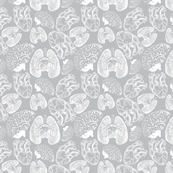 Anatomical Organ Variety White on Grey Small