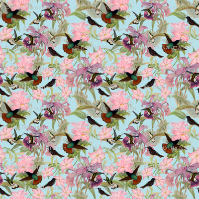 Hummingbirds on Tropical Flowers - Small - 18in x 18in