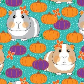 guinea-pigs-and-pumpkins-on-teal