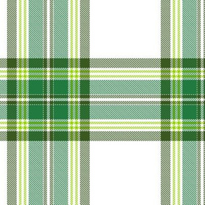 Tramaine Plaid in Forest