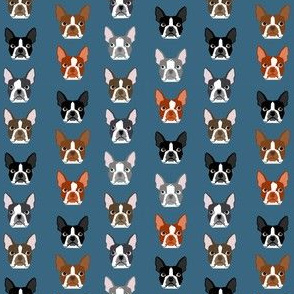 SMALL - boston terriers blue faces cute dogs dog pet dog fabrics for dog lovers