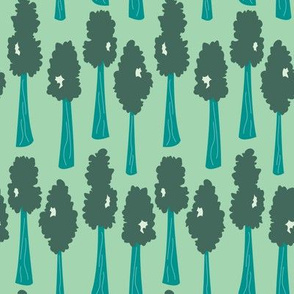 Tall Trees (Spring)