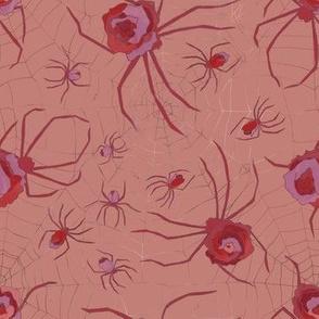 Rosy -Arachnid