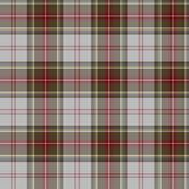"""Stewart/Stuart tartan #4, 6"""" grey ground"""