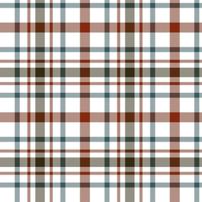 "MacDonagh tartan - 8"" weathered on white"