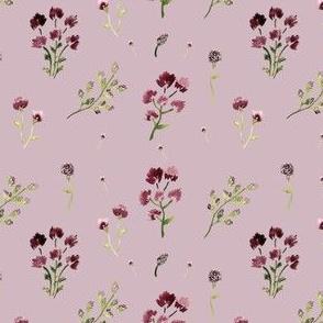 mauve wildflowers