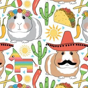 mexican guinea pigs on white