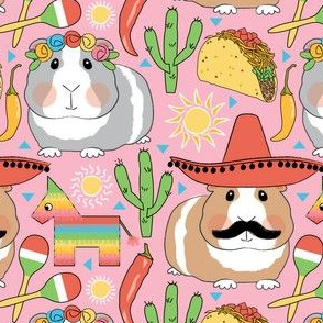 mexican guinea pigs on pink