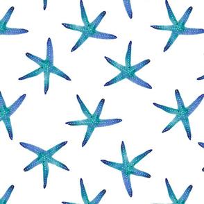 Blue starfish watercolour