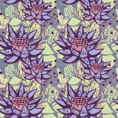 Candy Lotus Floral Botanical