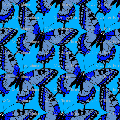 Butterflies Blue on Blue