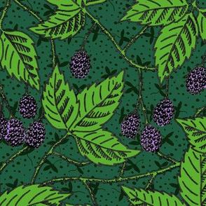 Victorian blackberries