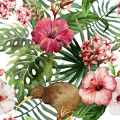 7936458_rsunny_2018_kiwi_hibiscus_3-01revised_shop_thumb