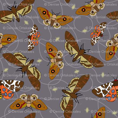 Mysterious Moths