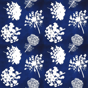 Queen Annes Lace - Navy