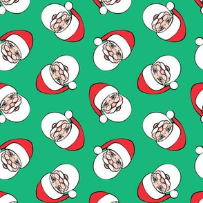 Santa Claus - toss on green  - Christmas