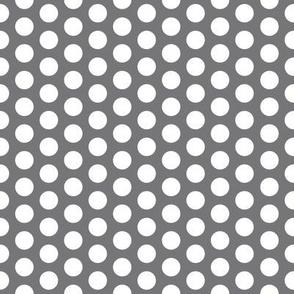 FS Medium White Polka Dot on Steel Grey